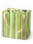 Striped Lime Bag