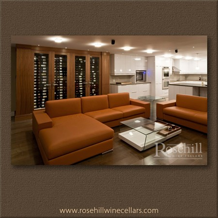 wine cabinet built-in wall, refrigerated space, wine cellar in living room